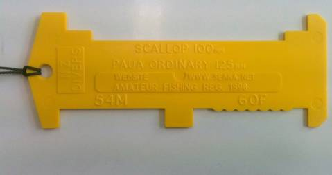NZ Divers Measure tool