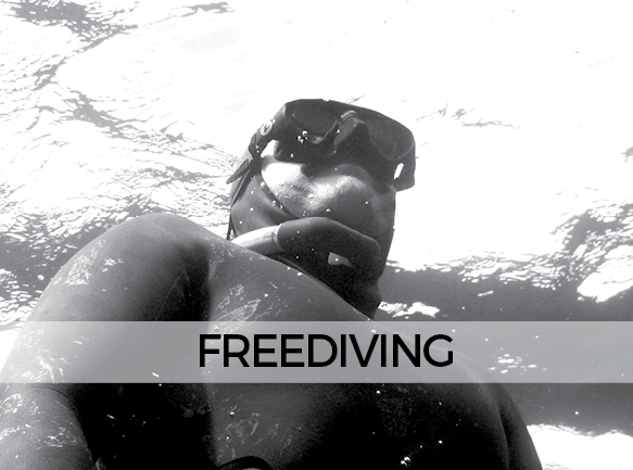 LANDING FREEDIVING