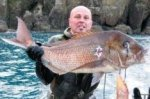 Spearfishing_large_snapper_1.JPG