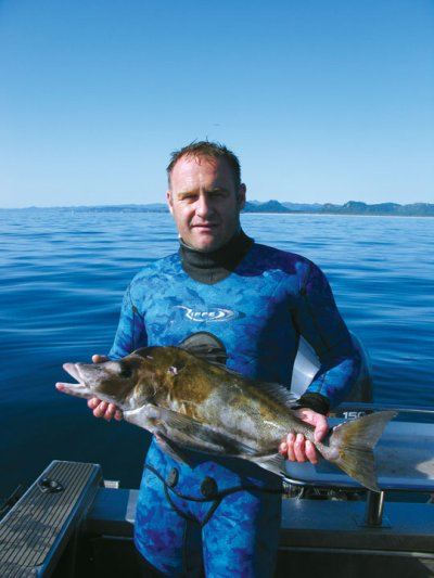 spearfishing_giant_boarfish3.jpg