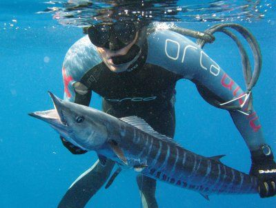 Spearfishing_Wahoo.jpg