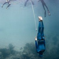 freediving_6.jpg