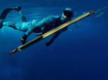 spearfishing spearguns oceanhunter