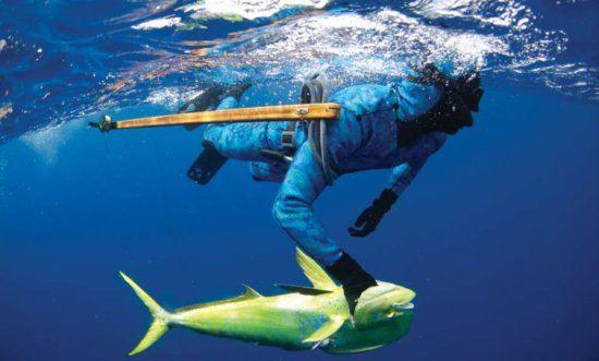 Deep Water Spearfishing Blue_water_spearfishing.jpg
