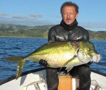 Trevally Spearfishing In New Zealand Ocean Hunter